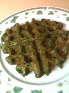 Mint Chocolate Chip Protein Waffle