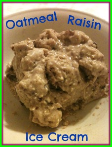Oatmeal Raisin Ice Cream 2
