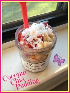 Coconut Chia Pudding 2
