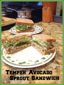 Tempeh Avocado Sprout Sandwich